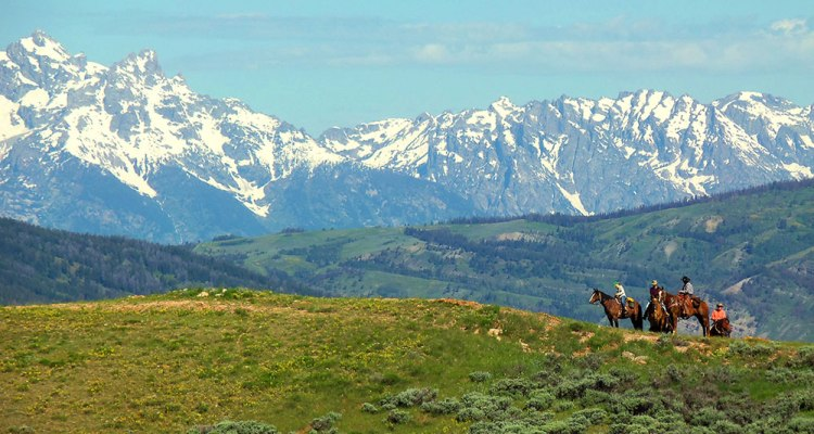 Choose Wyoming Ranch Vacation
